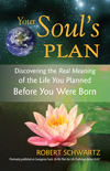 Your Soul's Plan - Robert Schwartz