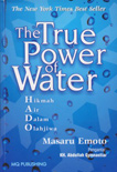 The True Power of Water - Masaru Emoto